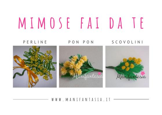 mimose fai da te