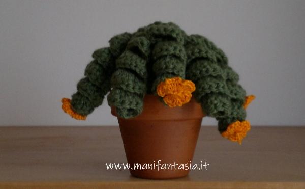 cactus riccioluto amigurumi di lana