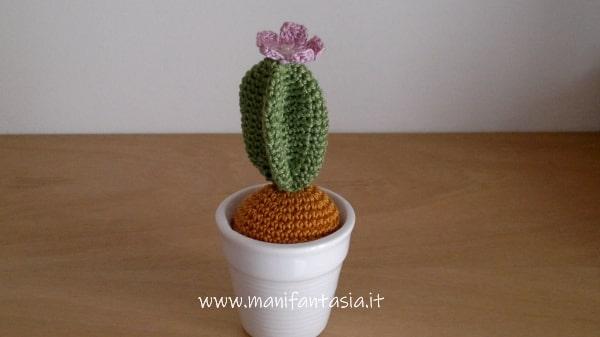 cactus uncinetto con fiore spiegazioni
