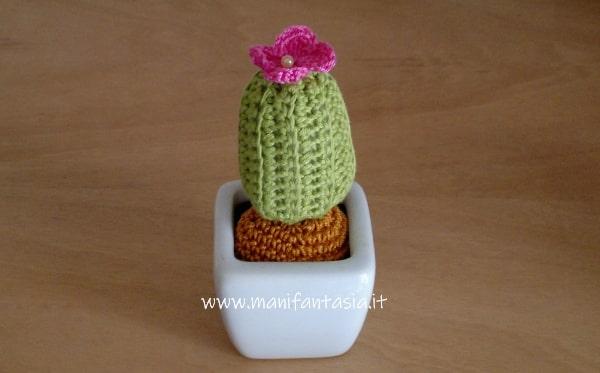 miniatura di pianta grassa amigurumi