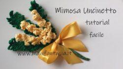 mimose uncinetto