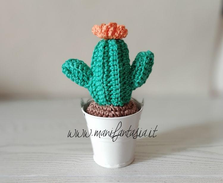 Cactus uncinetto con fiorellino